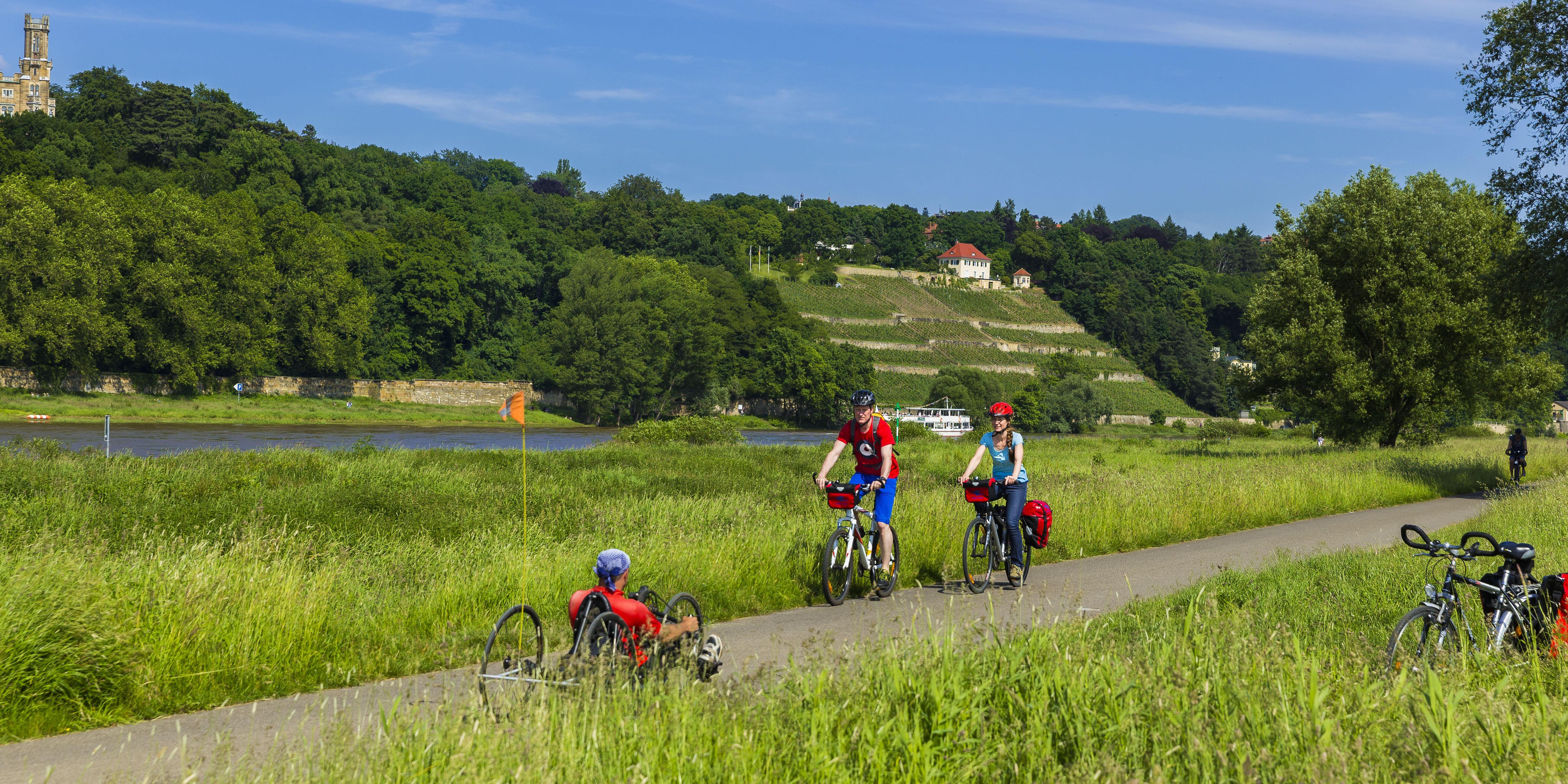 Elberadweg auf Höhe der Dresdner Elbschlösser